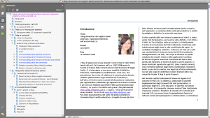 Lara Barilli, I blog universitari > TOC e introduzione
