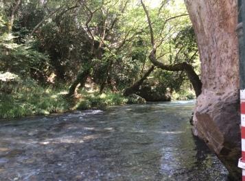 il fiume Lousios a Helleniko (300 m) gelido!