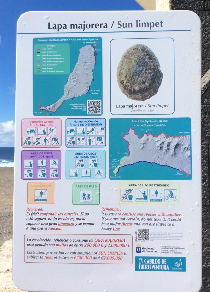 Punta de Jandia: occhio a non toccare la patella sbagliata!