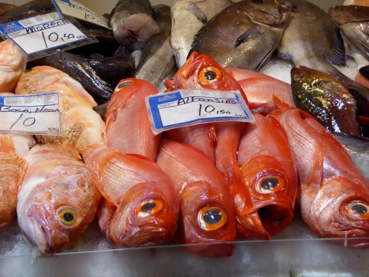 al mercato di Tenerife, Alfonsino non ha un'aria molto contenta...