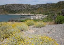 Una delle due spiagge di Agios Nikolaos (nord dell'isola)